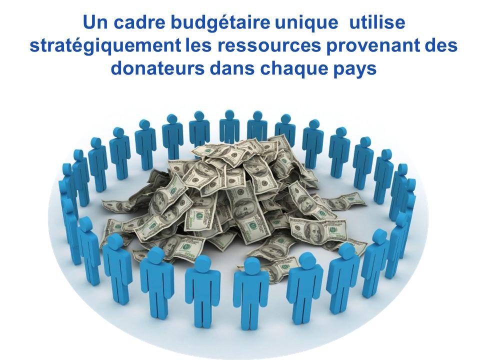 Un cadre budgétaire unique utilise stratégiquement les ressources provenant des donateurs dans chaque pays