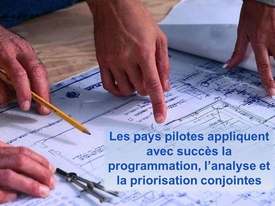 Les pays pilotes appliquent avec succès la programmation, lanalyse et la priorisation conjointes