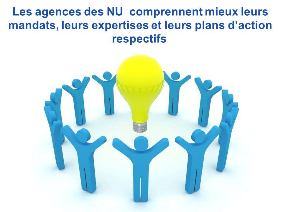 Les agences des NU comprennent mieux leurs mandats, leurs expertises et leurs plans daction respectifs