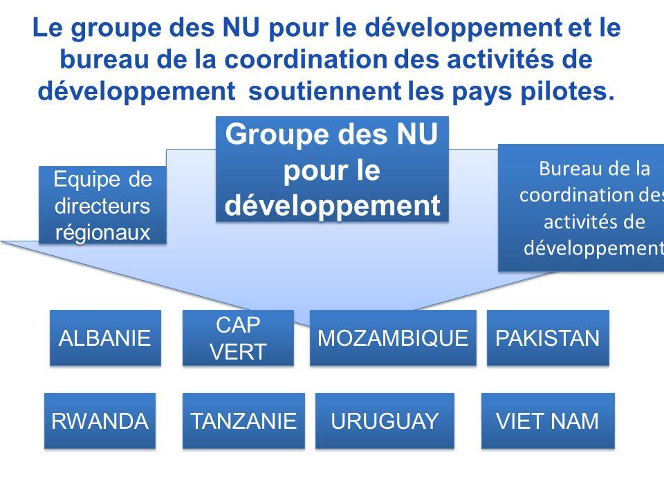 Le groupe des NU pour le développement et le bureau de la coordination des activités de développement soutiennent les pays pilotes.