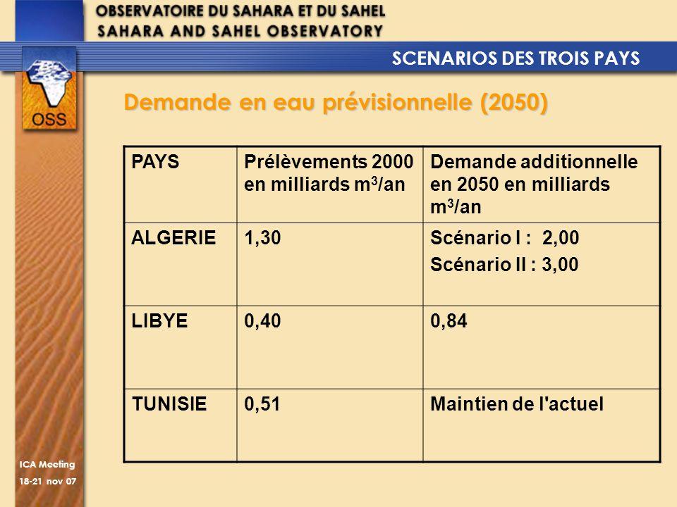 ICA Meeting 18-21 nov 07 Demande en eau prévisionnelle (2050) PAYSPrélèvements 2000 en milliards m 3 /an Demande additionnelle en 2050 en milliards m