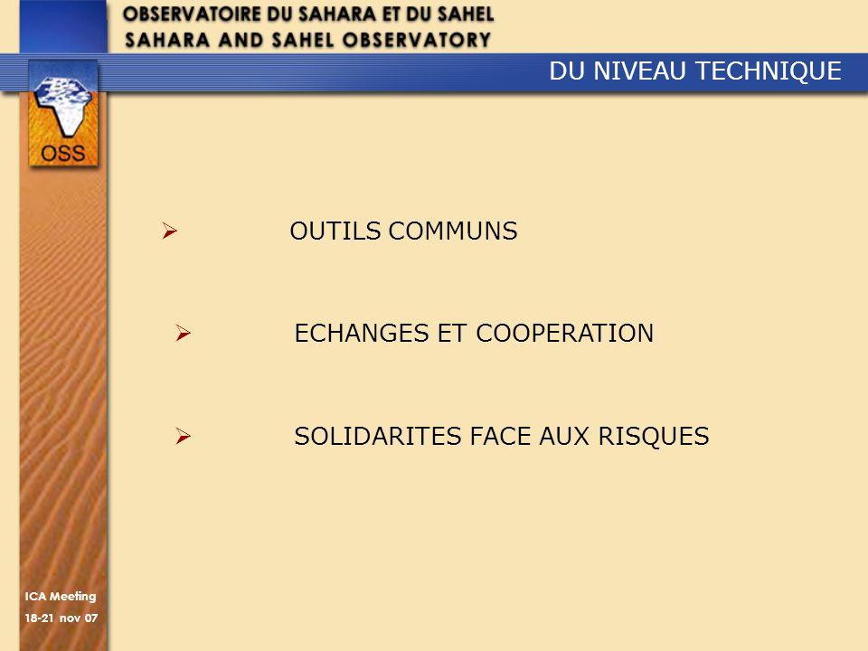 ICA Meeting 18-21 nov 07 DU NIVEAU TECHNIQUE OUTILS COMMUNS ECHANGES ET COOPERATION SOLIDARITES FACE AUX RISQUES