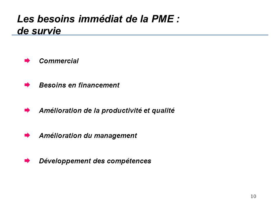 9 Que peut apporter le conseil à la PME.