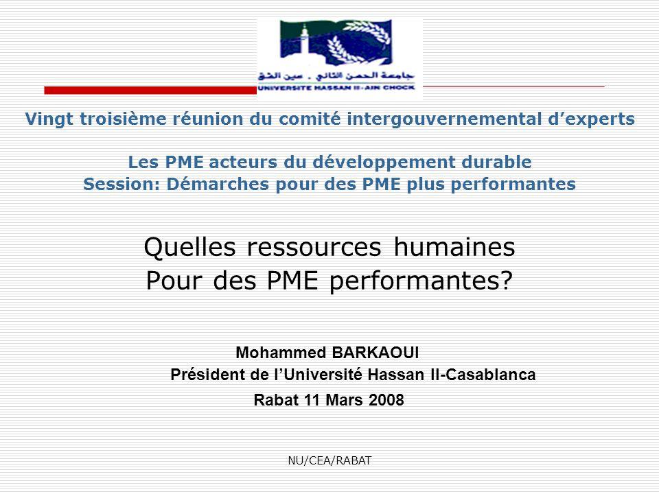 NU/CEA/RABAT Vingt troisième réunion du comité intergouvernemental dexperts Les PME acteurs du développement durable Session: Démarches pour des PME p