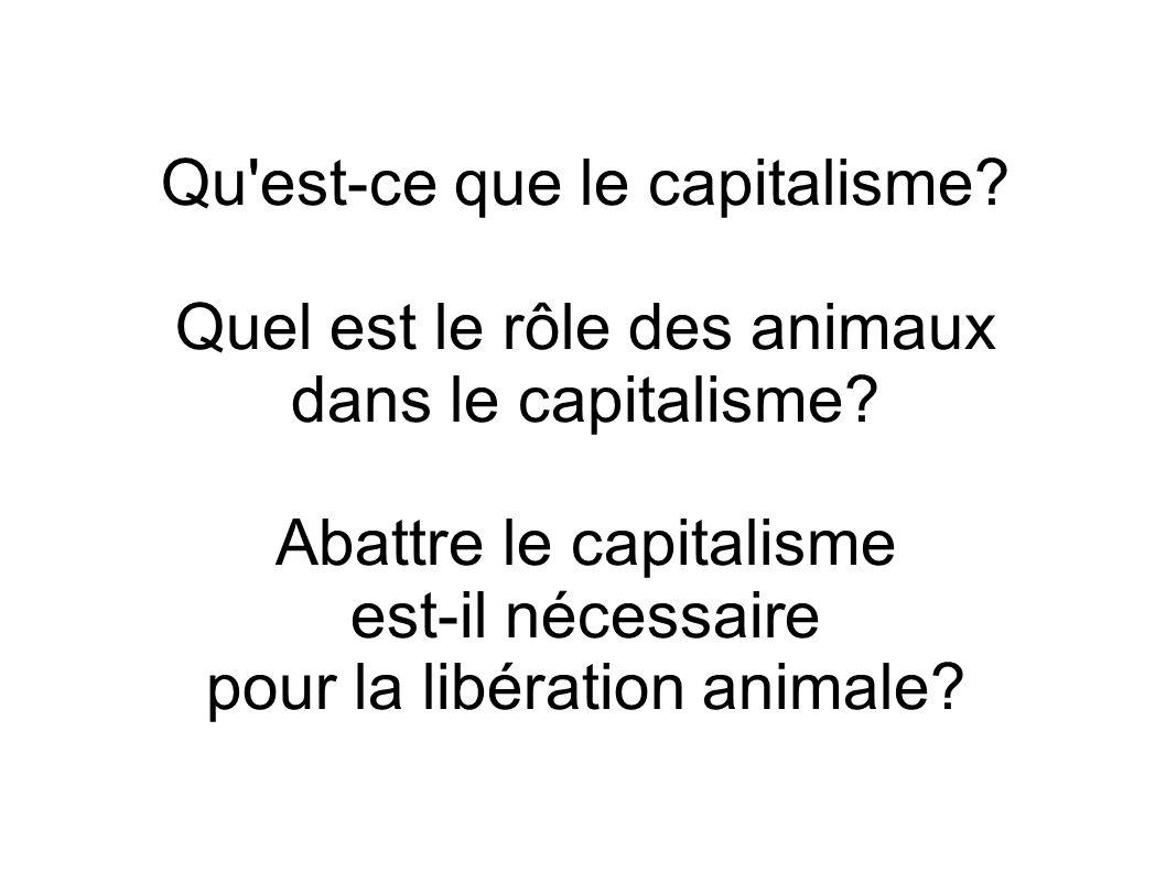 Qu'est-ce que le capitalisme? Quel est le rôle des animaux dans le capitalisme? Abattre le capitalisme est-il nécessaire pour la libération animale?