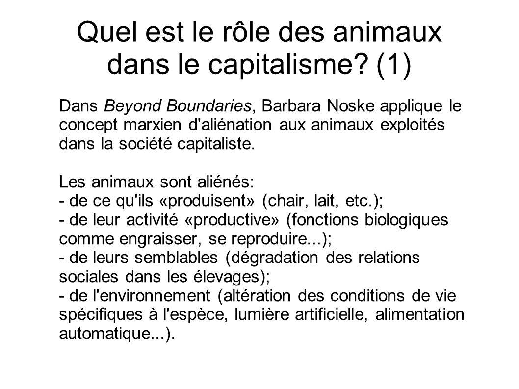 Quel est le rôle des animaux dans le capitalisme? (1) Dans Beyond Boundaries, Barbara Noske applique le concept marxien d'aliénation aux animaux explo