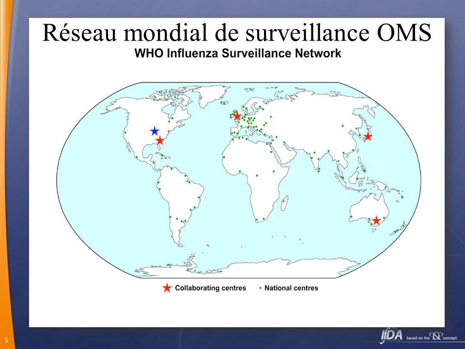 5 Réseau mondial de surveillance OMS