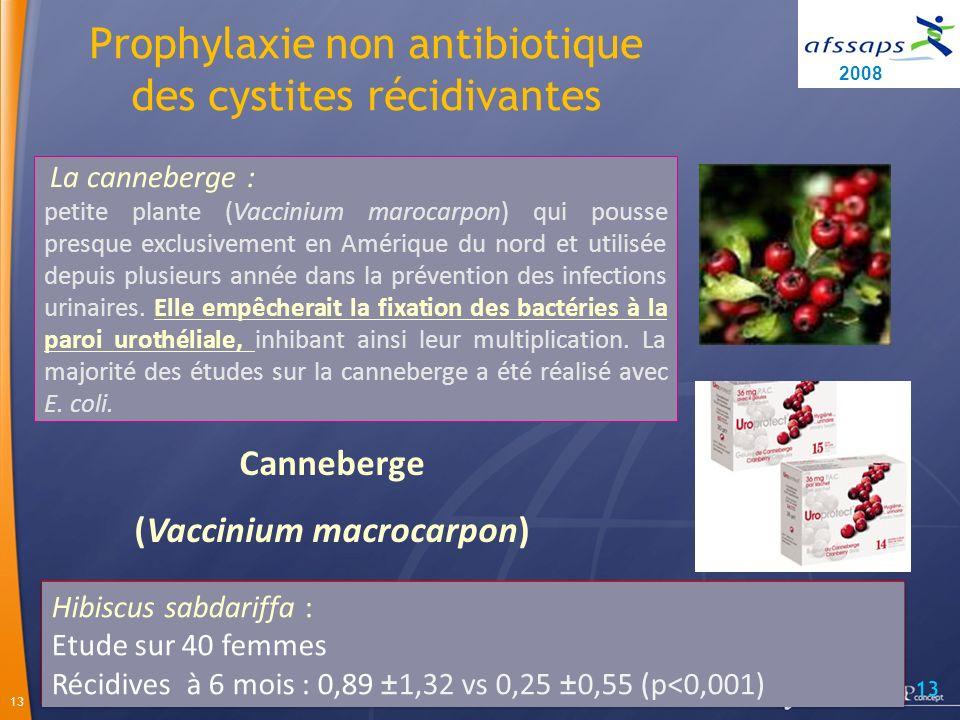 13 Canneberge (Vaccinium macrocarpon) La canneberge : petite plante (Vaccinium marocarpon) qui pousse presque exclusivement en Amérique du nord et utilisée depuis plusieurs année dans la prévention des infections urinaires.