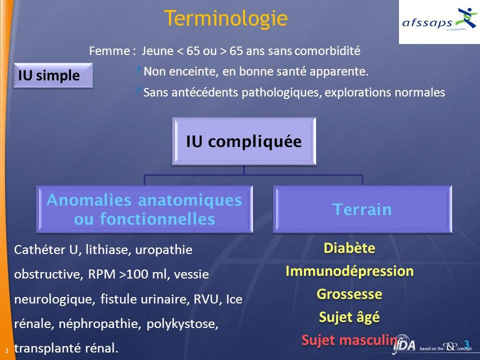 3 3 Cathéter U, lithiase, uropathie obstructive, RPM >100 ml, vessie neurologique, fistule urinaire, RVU, Ice rénale, néphropathie, polykystose, transplanté rénal.