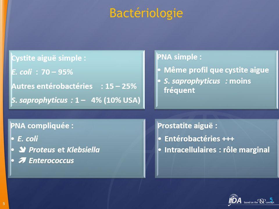 5 5 Bactériologie Cystite aiguë simple : E.coli : 70 – 95% Autres entérobactéries: 15 – 25% S.