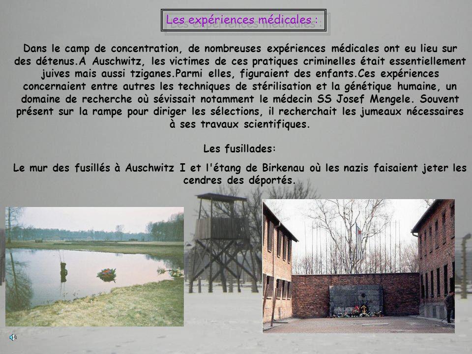 Dans le camp de concentration, de nombreuses expériences médicales ont eu lieu sur des détenus.A Auschwitz, les victimes de ces pratiques criminelles