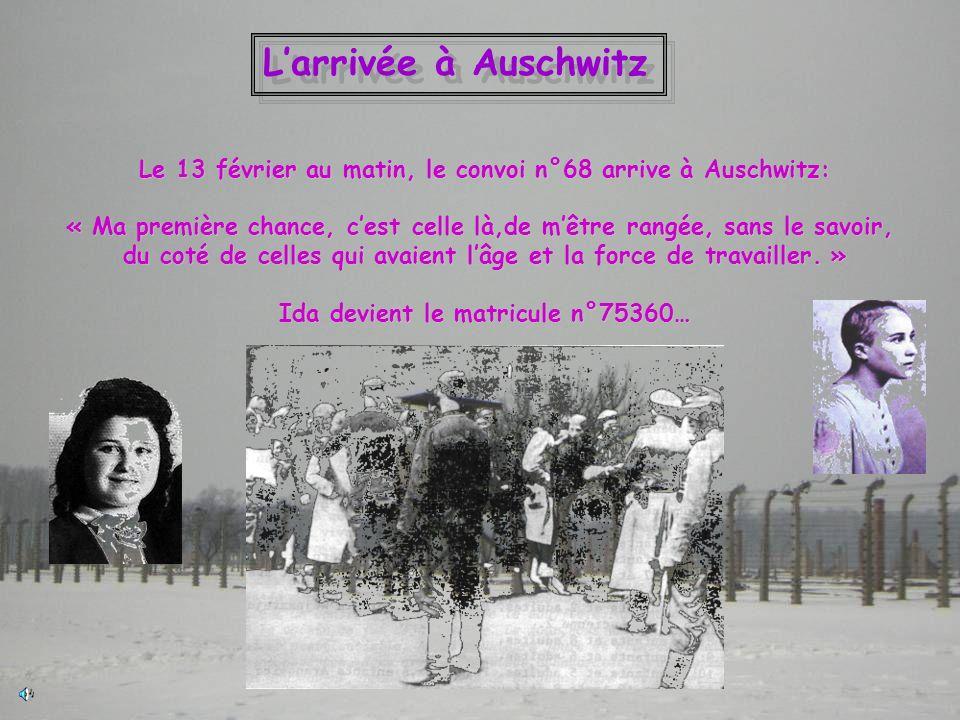 Larrivée à Auschwitz Le 13 février au matin, le convoi n°68 arrive à Auschwitz: « Ma première chance, cest celle là,de mêtre rangée, sans le savoir, d