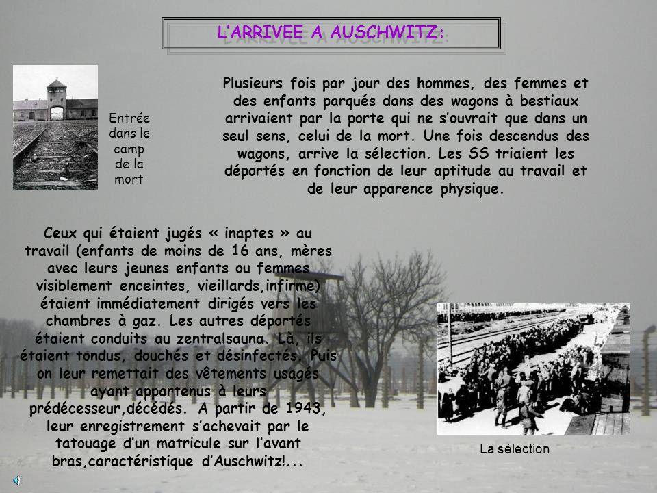 LARRIVEE A AUSCHWITZ: Entrée dans le camp de la mort Plusieurs fois par jour des hommes, des femmes et des enfants parqués dans des wagons à bestiaux