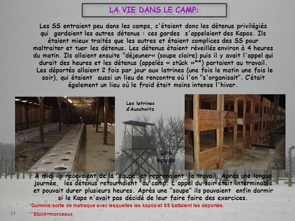 LA VIE DANS LE CAMP: Les SS entraient peu dans les camps, c'étaient donc les détenus privilégiés qui gardaient les autres détenus : ces gardes s'appel