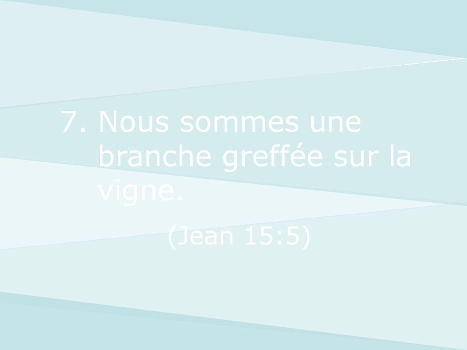7. Nous sommes une branche greffée sur la vigne. (Jean 15:5)