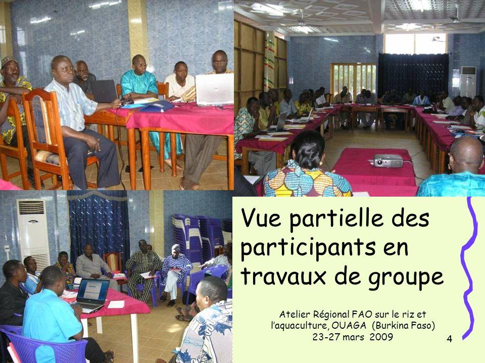 14/11/20134 Vue partielle des participants en travaux de groupe Atelier Régional FAO sur le riz et laquaculture, OUAGA (Burkina Faso) 23-27 mars 2009