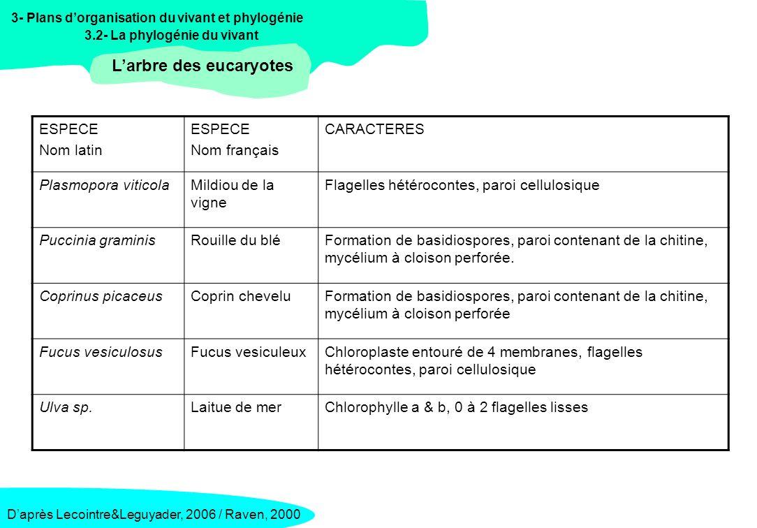 3- Plans dorganisation du vivant et phylogénie 3.2- La phylogénie du vivant Lorigine endosymbiotique … : les arguments Daprès Selosse&Loiseaux, La Recherche n°296