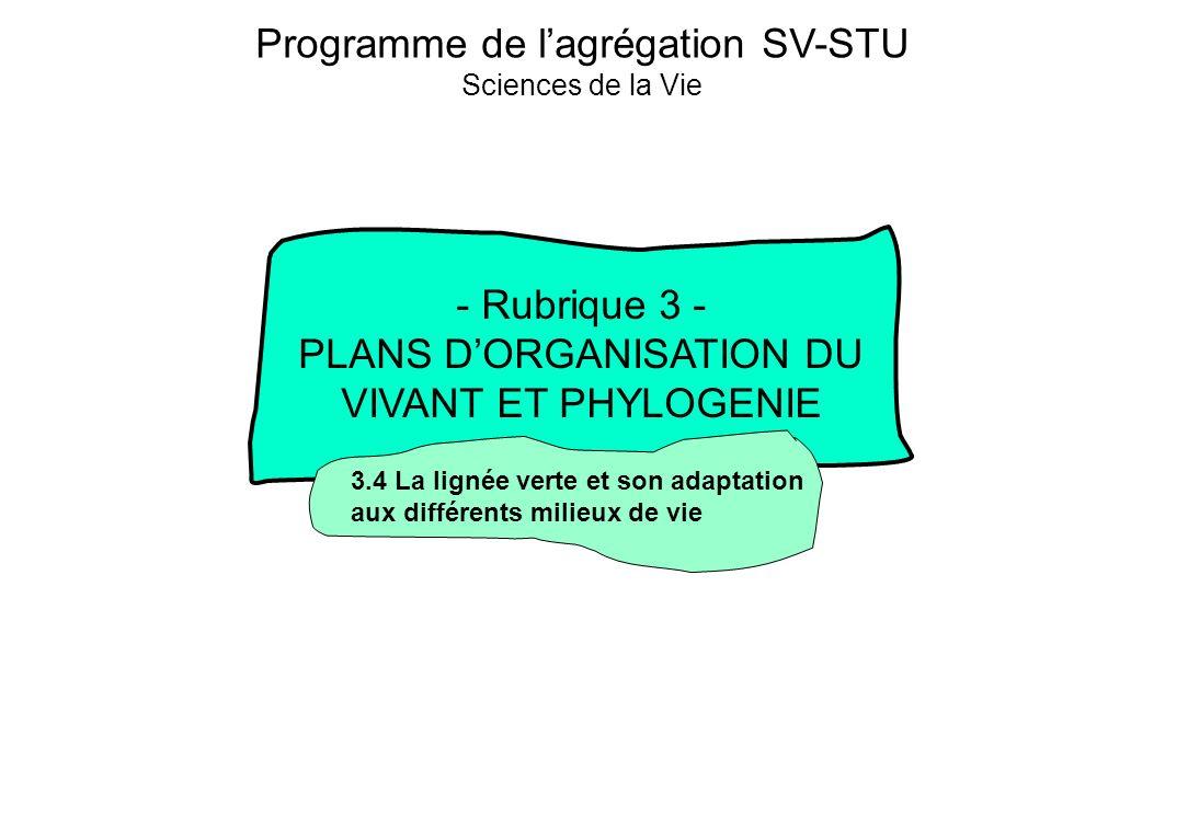 3- Plans dorganisation du vivant et phylogénie 3.4- La « lignée verte » et son adaptation aux différents milieux de vie Classification des Embryophytes Daprès Raven, 2000