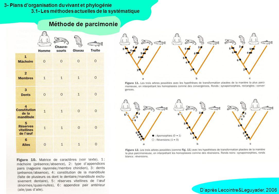 3- Plans dorganisation du vivant et phylogénie 3.1- Les méthodes actuelles de la systématique Méthode phénétique et UPGMA Daprès Lecointre&Leguyader, 2006