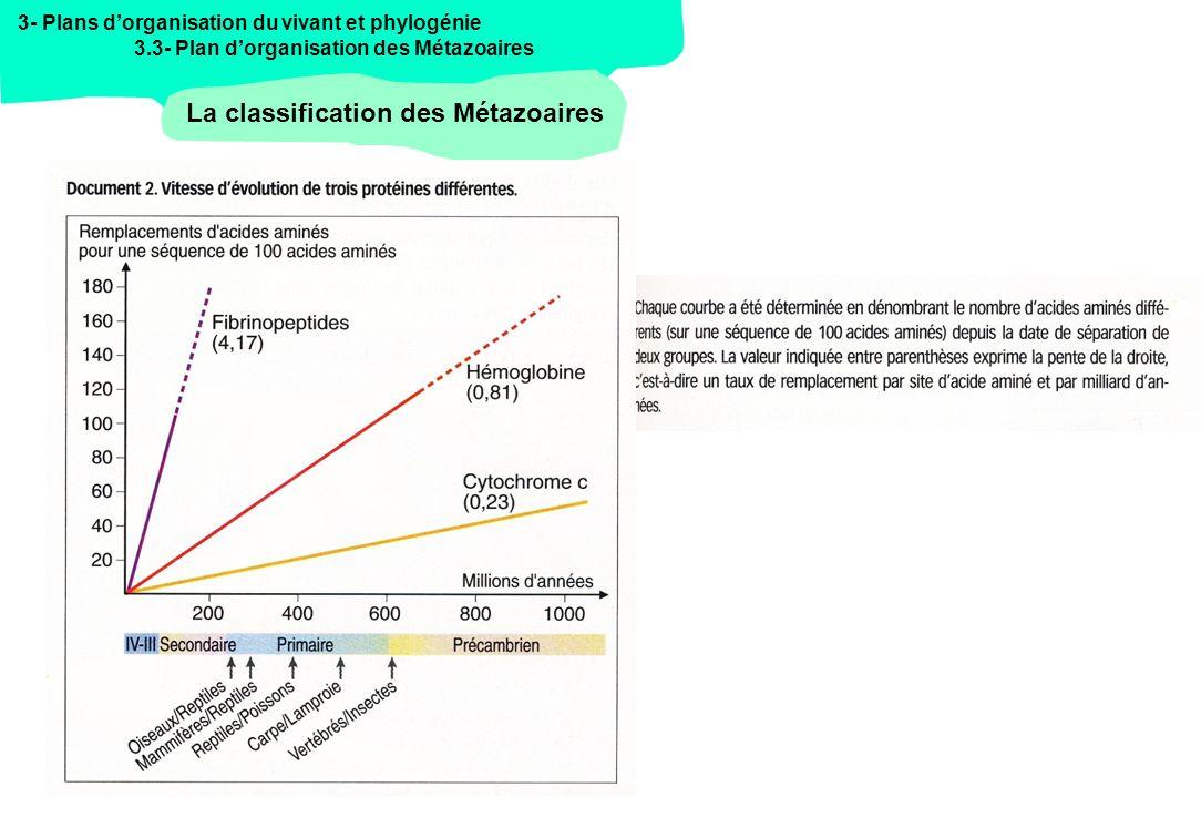 - Rubrique 3 - PLANS DORGANISATION DU VIVANT ET PHYLOGENIE Programme de lagrégation SV-STU Sciences de la Vie 3.2 La phylogénie du vivant