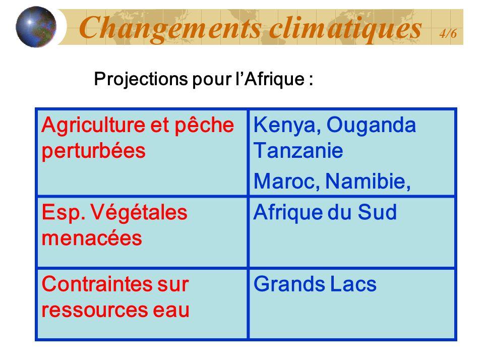 Agriculture et pêche perturbées Kenya, Ouganda Tanzanie Maroc, Namibie, Esp. Végétales menacées Afrique du Sud Contraintes sur ressources eau Grands L