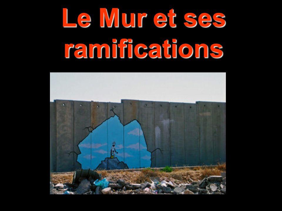 Le Mur et ses ramifications