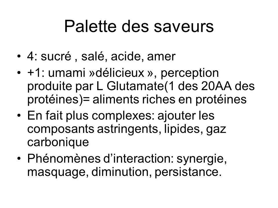Palette des saveurs 4: sucré, salé, acide, amer +1: umami »délicieux », perception produite par L Glutamate(1 des 20AA des protéines)= aliments riches