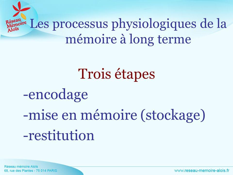 Trois étapes -encodage -mise en mémoire (stockage) -restitution Les processus physiologiques de la mémoire à long terme