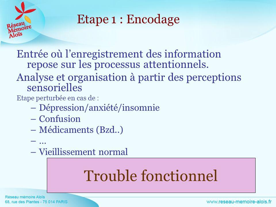 Entrée où lenregistrement des information repose sur les processus attentionnels. Analyse et organisation à partir des perceptions sensorielles Etape