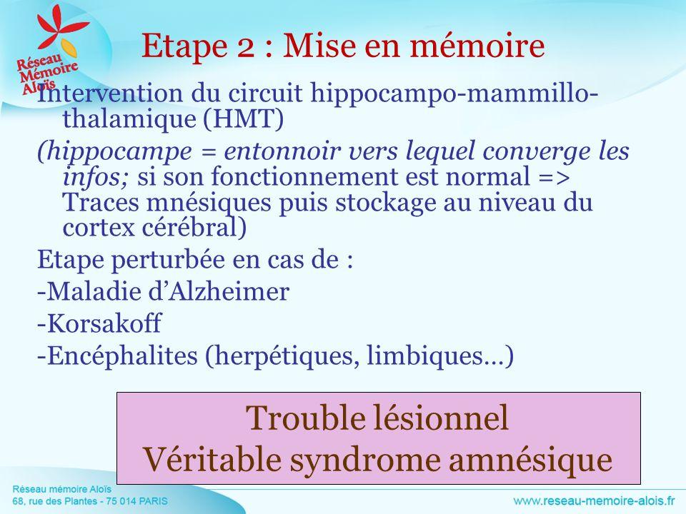 Intervention du circuit hippocampo-mammillo- thalamique (HMT) (hippocampe = entonnoir vers lequel converge les infos; si son fonctionnement est normal