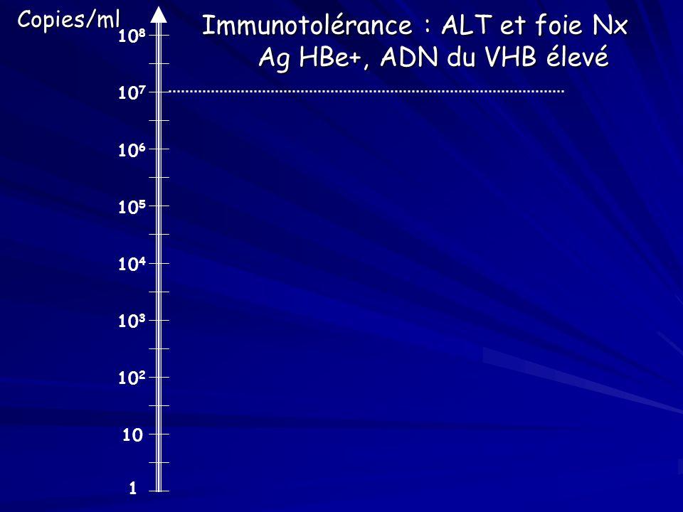 1 10 10 2 10 3 10 4 10 5 10 6 10 7 10 8Copies/ml Immunotolérance : ALT et foie Nx Ag HBe+, ADN du VHB élevé