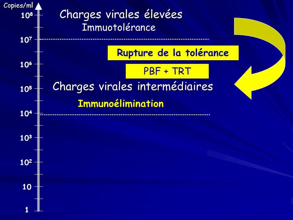 1 10 10 2 10 3 10 4 10 5 10 6 10 7 10 8 Charges virales élevées Charges virales intermédiaires Copies/m l Rupture de la tolérance Immuotolérance Immun