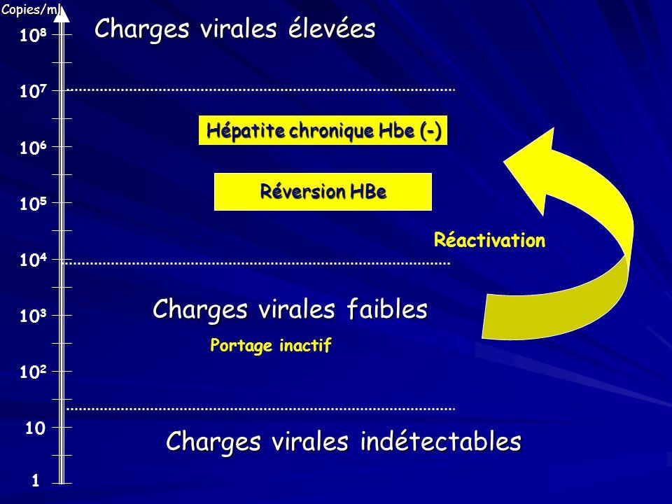 1 10 10 2 10 3 10 4 10 5 10 6 10 7 10 8 Charges virales élevées Charges virales faibles Hépatite chronique Hbe (-) Charges virales indétectables Porta