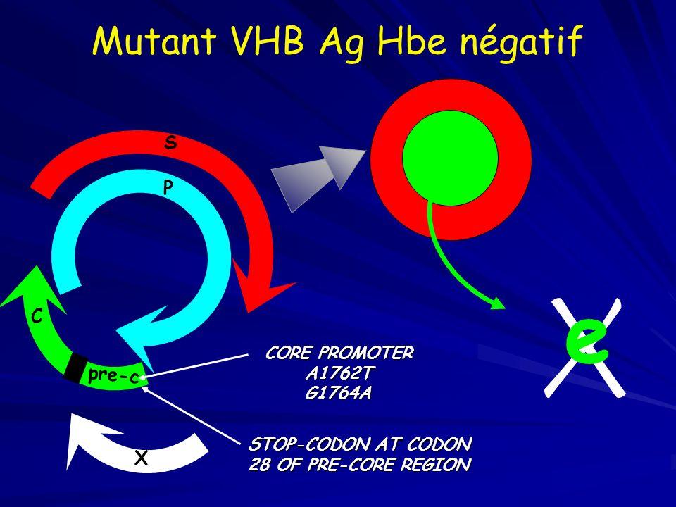 pre-c C P S CORE PROMOTER A1762TG1764A STOP-CODON AT CODON 28 OF PRE-CORE REGION X e Mutant VHB Ag Hbe négatif