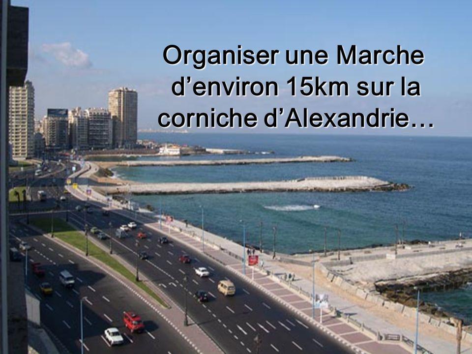 Organiser une Marche denviron 15km sur la corniche dAlexandrie…
