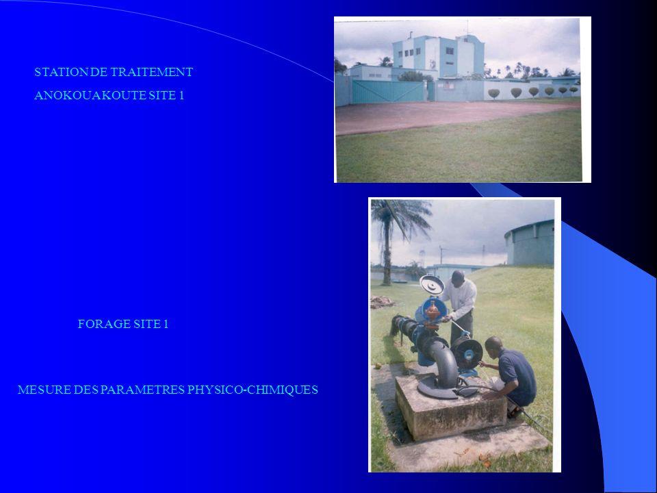 STATION DE TRAITEMENT ANOKOUA KOUTE SITE 1 FORAGE SITE 1 MESURE DES PARAMETRES PHYSICO-CHIMIQUES