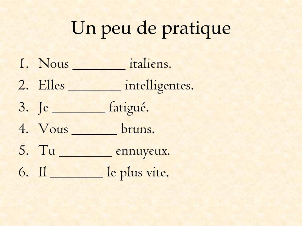 Un peu de pratique 1.Nous _______ italiens. 2.Elles _______ intelligentes. 3.Je _______ fatigué. 4.Vous ______ bruns. 5.Tu _______ ennuyeux. 6.Il ____