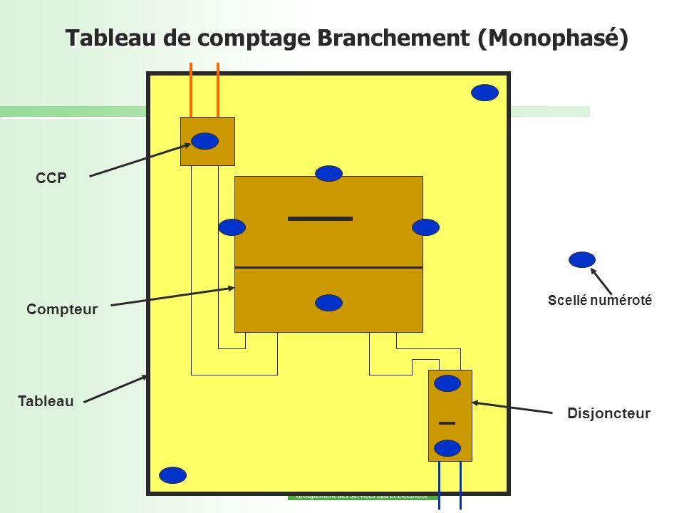 Tableau de comptage Branchement (Monophasé) CCP Compteur Tableau Disjoncteur Scellé numéroté