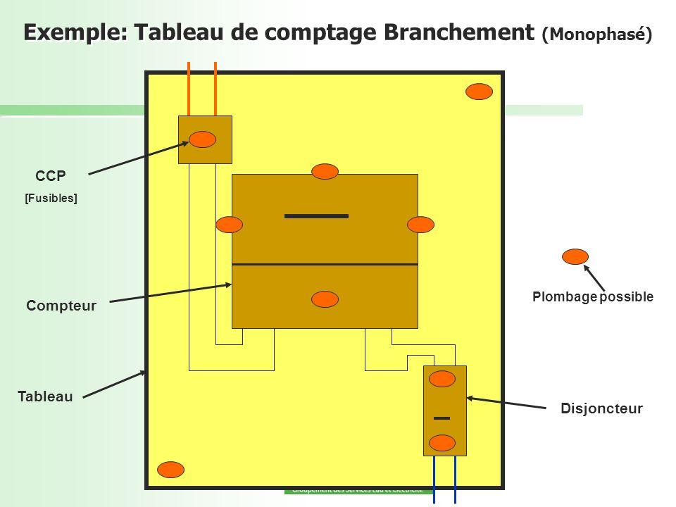 Exemple: Tableau de comptage Branchement (Monophasé) CCP [Fusibles] Compteur Tableau Disjoncteur Plombage possible