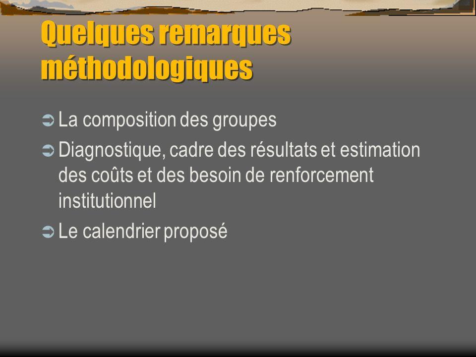 Quelques remarques méthodologiques La composition des groupes Diagnostique, cadre des résultats et estimation des coûts et des besoin de renforcement institutionnel Le calendrier proposé