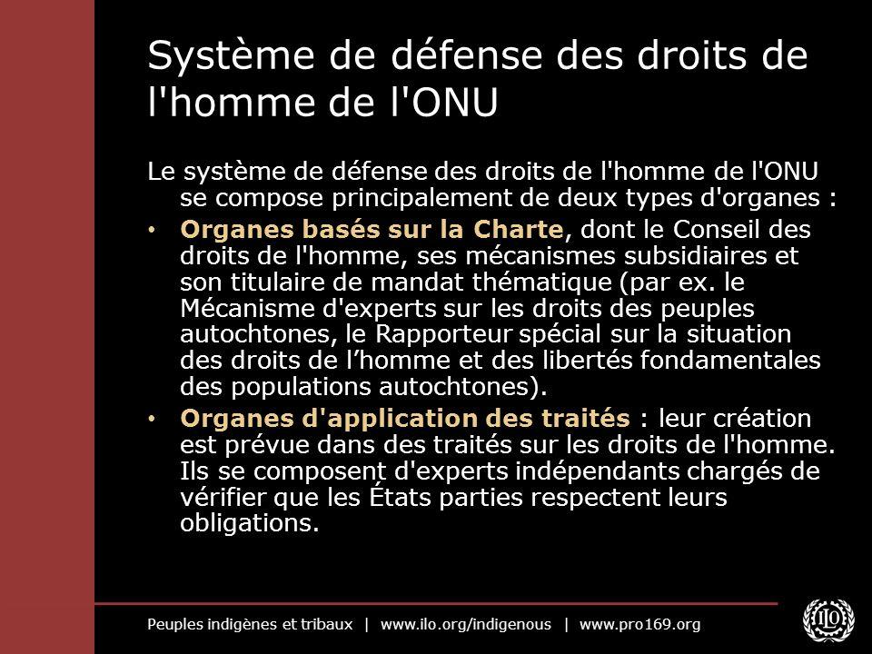Peuples indigènes et tribaux | www.ilo.org/indigenous | www.pro169.org Organes d application de la Charte : Le Conseil des droits de l homme (CDH) et ses organes/mécanismes subsidiaires Le CDH a été créé en 2006 pour remplacer la Commission aux droits de l homme.
