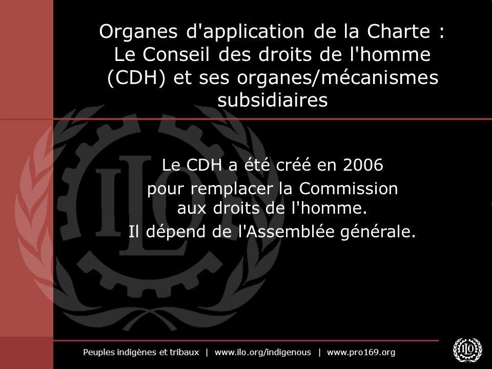 Peuples indigènes et tribaux   www.ilo.org/indigenous   www.pro169.org Organes d'application de la Charte : Le Conseil des droits de l'homme (CDH) et