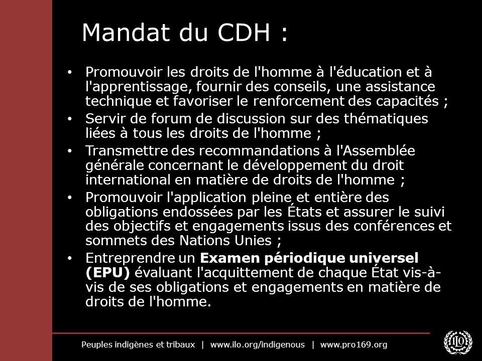 Peuples indigènes et tribaux   www.ilo.org/indigenous   www.pro169.org Mandat du CDH : Promouvoir les droits de l'homme à l'éducation et à l'apprentis