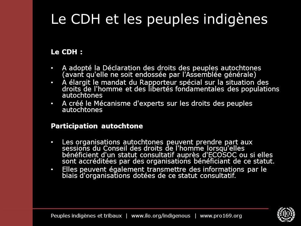 Peuples indigènes et tribaux   www.ilo.org/indigenous   www.pro169.org Le CDH et les peuples indigènes Le CDH : A adopté la Déclaration des droits des