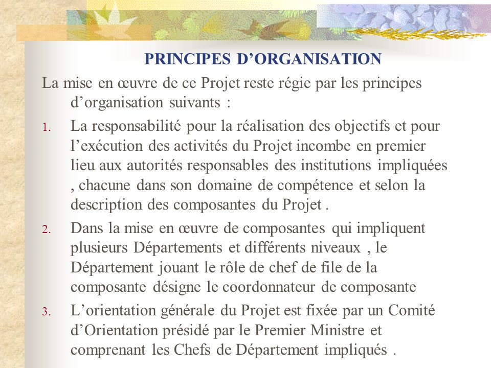 PRINCIPES DORGANISATION La mise en œuvre de ce Projet reste régie par les principes dorganisation suivants : 1. La responsabilité pour la réalisation