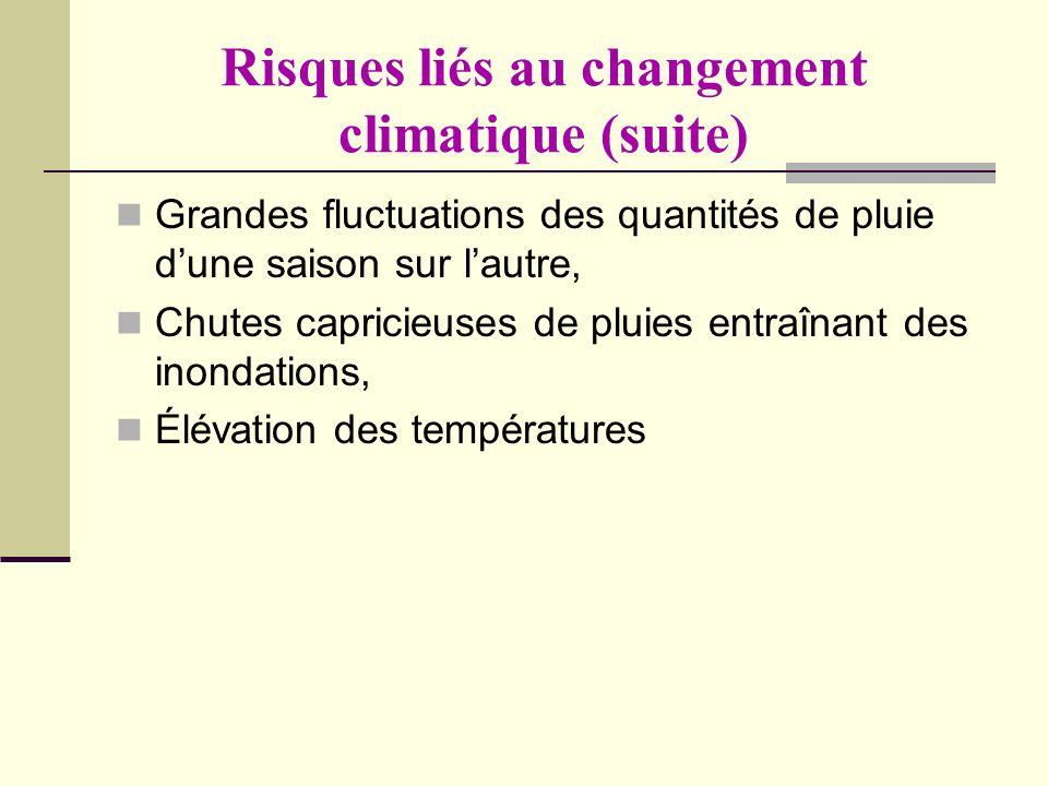 Risques liés au changement climatique (suite) Grandes fluctuations des quantités de pluie dune saison sur lautre, Chutes capricieuses de pluies entraî