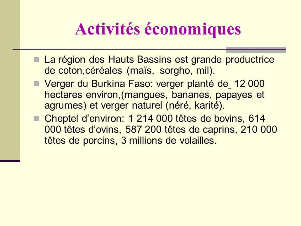 Activités économiques La région des Hauts Bassins est grande productrice de coton,céréales (maïs, sorgho, mil). Verger du Burkina Faso: verger planté