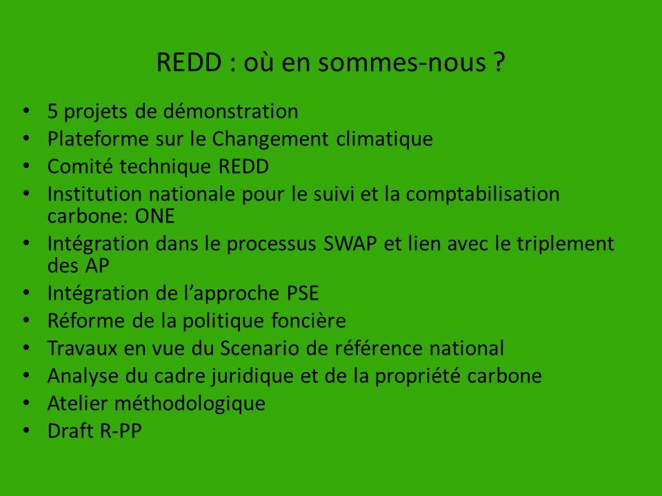 REDD : où en sommes-nous ? 5 projets de démonstration Plateforme sur le Changement climatique Comité technique REDD Institution nationale pour le suiv