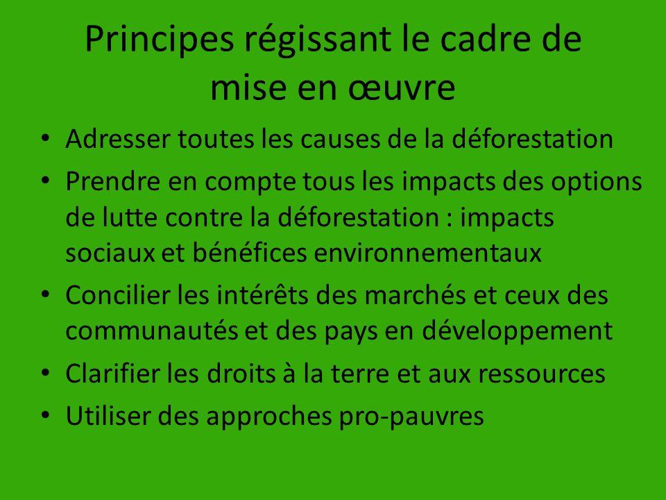 Principes régissant le cadre de mise en œuvre Adresser toutes les causes de la déforestation Prendre en compte tous les impacts des options de lutte c