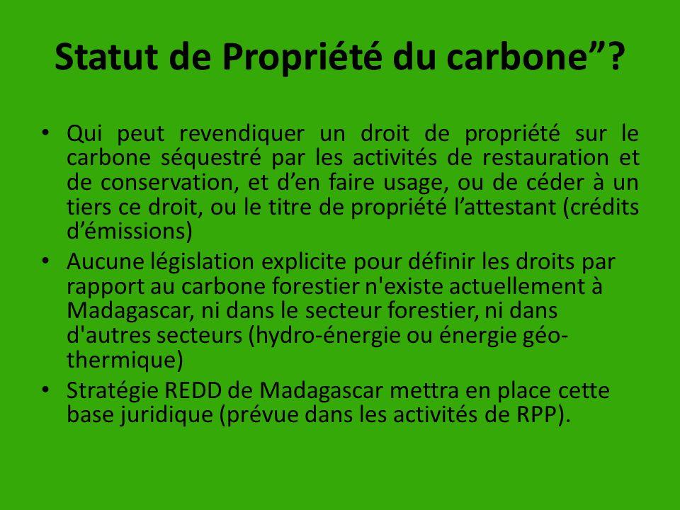 Statut de Propriété du carbone? Qui peut revendiquer un droit de propriété sur le carbone séquestré par les activités de restauration et de conservati